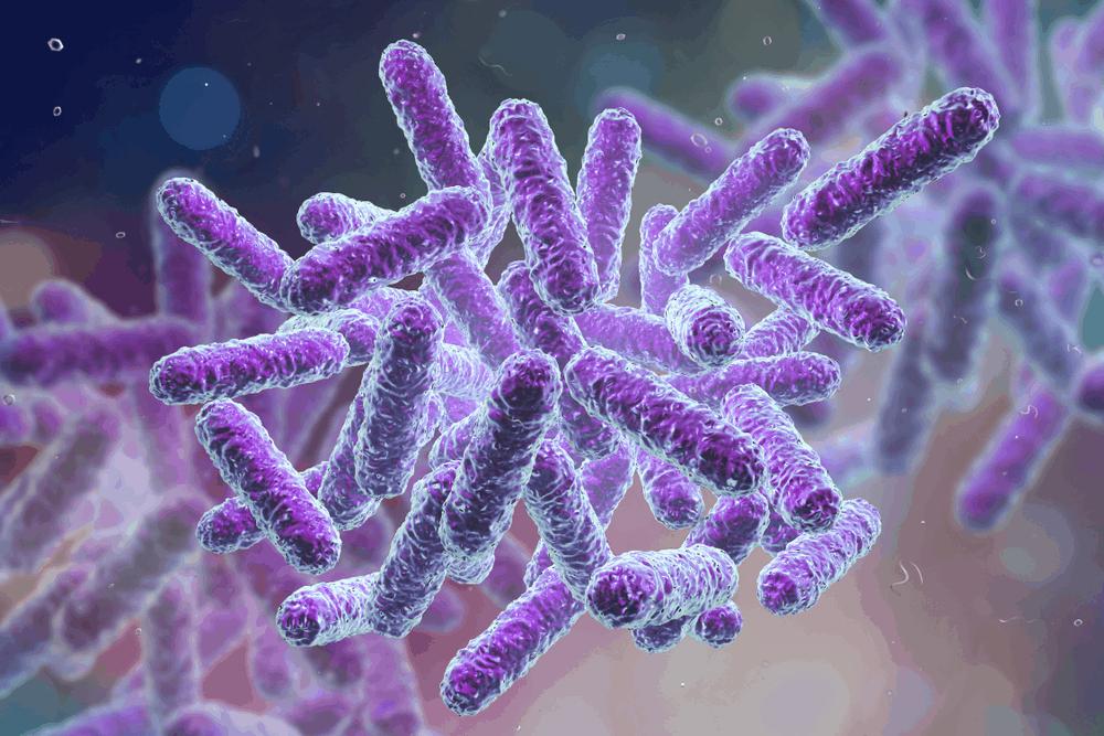 good-vaginal-bacteri-(2)