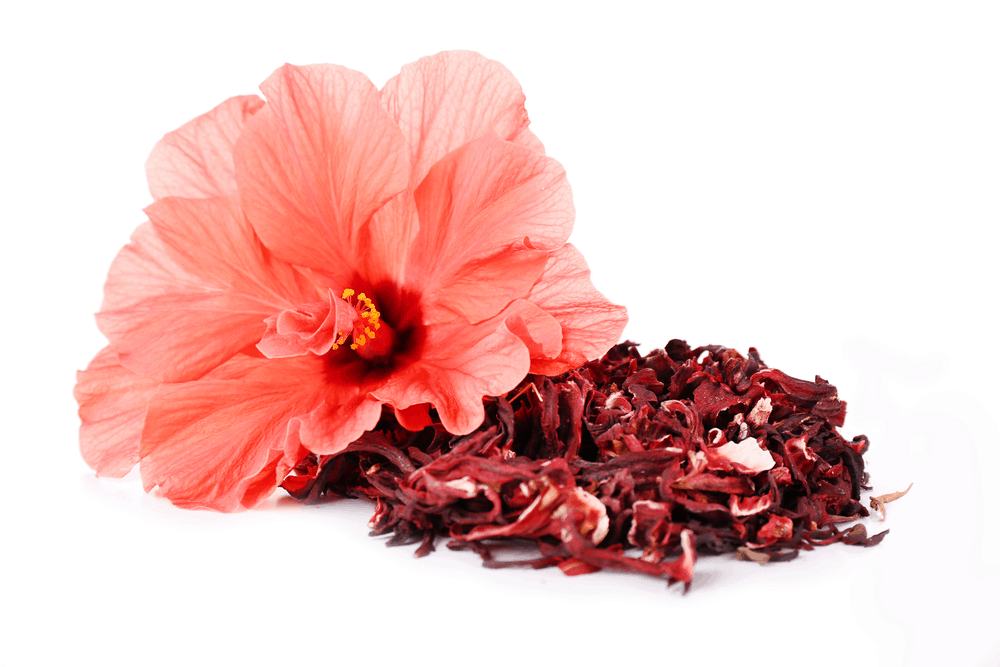 Hibiscus-tea-(2)
